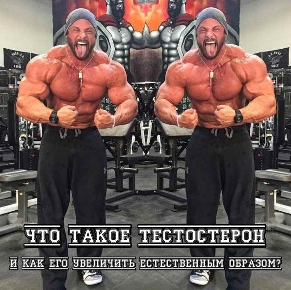 CHto takoe testosteron