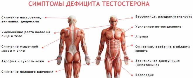Simptomy snizheniya testosterona