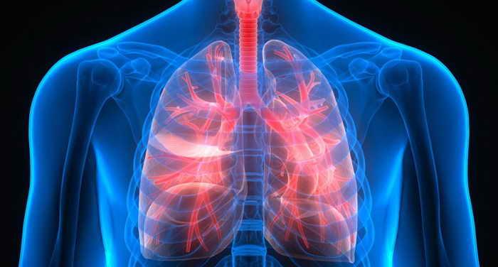 Tuberkulez organov