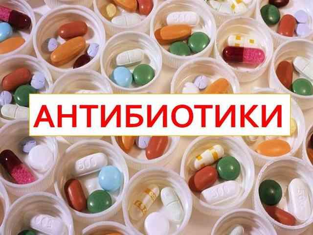 Antibiotiki vredyat immunnoj sisteme
