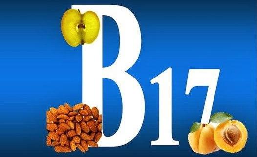 Korotko o vitamine V17