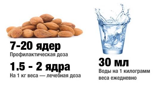Razreshennaya sutochnaya norma upotrebleniya vitamina V17