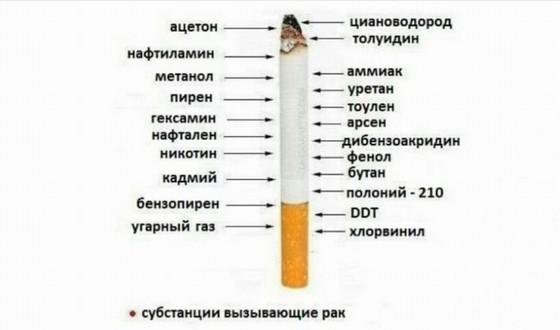 Vred tabaka na organizm cheloveka